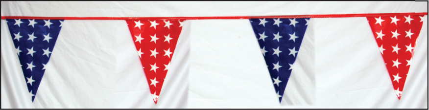 #95-S  -  Red and Blue Plastic Pennants w/ White Stars