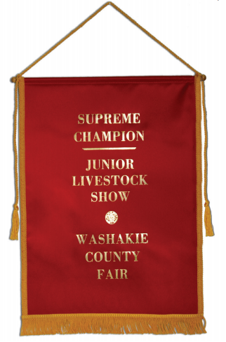 #1009-G - Ribbon Banner with Gold Braid